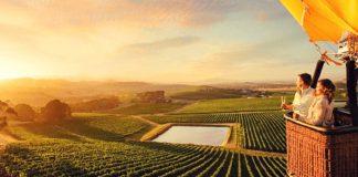 Những vùng đất trồng nho nổi tiếng ở Úc
